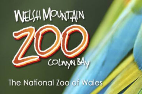 Welsh Mountain Zoo